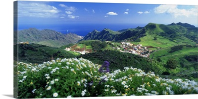 Spain, Canary Islands, Landscape