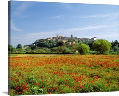Spain, Catalonia, Costa Brava, Poppies field and the town of Pals in background