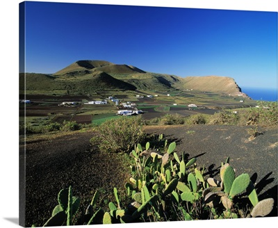 Spain, Lanzarote, volcano and cactus