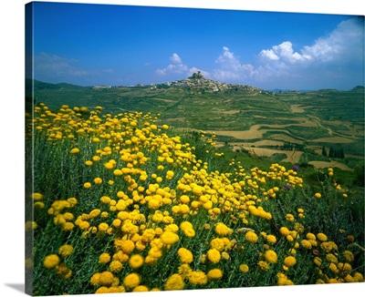 Spain, Navarra, View towards Ujue village