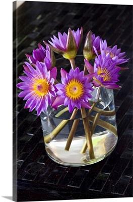 Sri Lanka, Ceylon, Lotus Flower, national flower