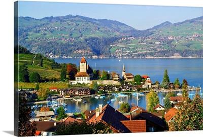 Switzerland, Bern, Berner Oberland, Lake Thun, Spiez, medieval castle, vineyards