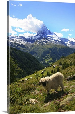 Switzerland, Valais, Zermatt, Matterhorn (Cervino)