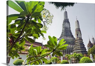 Thailand, Thailand Central, Bangkok, Wat Arun Frangipane flowers, Temple