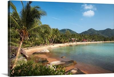 Thailand, Thailand Southern, Southeast Asia, Ko Tao, Hat Sai Ri Beach