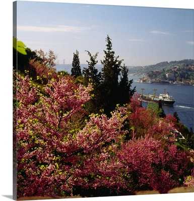 Turkey, Istanbul, Bosphorus straits and Bosphorus Bridge in background
