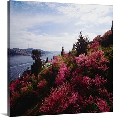 Turkey, Istanbul, View on Bosphorus