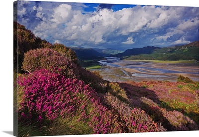UK, Wales, Barmouth, Mawddach River Estuary, Cader Idris mountain range