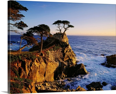United States, California, Carmel Coast near Monterey Bay
