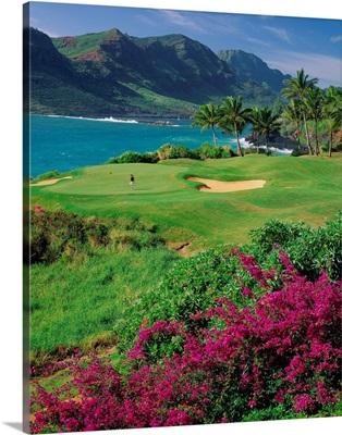 United States, Hawaii, Kauai island, Lihue, Kalapaki bay, Lagoons golf course