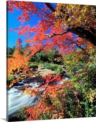 United States, New York State, Adirondacks, Ausable river