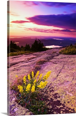 USA, Maine, Mount Desert Island, Sunset at Cadillac Mountain
