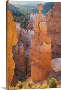 Utah, Bryce Canyon National Park, Sunrise at Thor's Hammer
