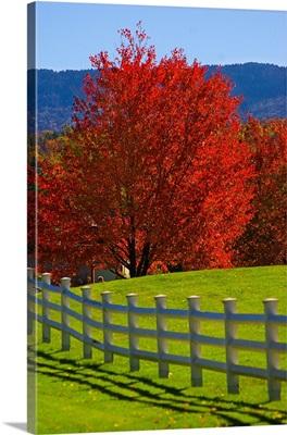 Vermont, Stowe