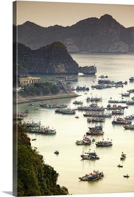 Vietnam, Halong Bay, Cat Ba Island, Ha Long Bay, Quang Ninh