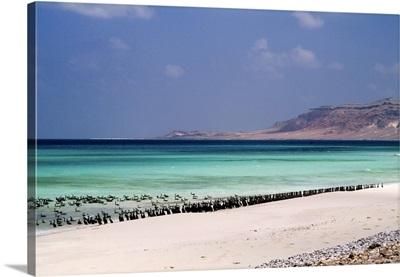 Yemen, South Yemen, Socotra, Indian ocean, beach of Ar-Ar