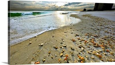 Beach Shells Sunset Landscape
