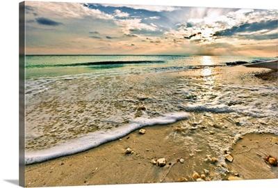 Beautiful Beach Sunset Sea Shells On Beach Picture