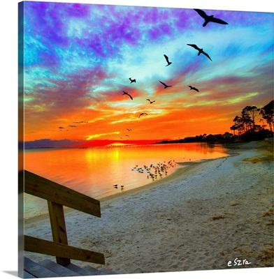 Birds Soaring Orange Sunset Reflection-Sandy Shore