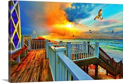Colorful Beach  Sunset Landscape Sea Hawk