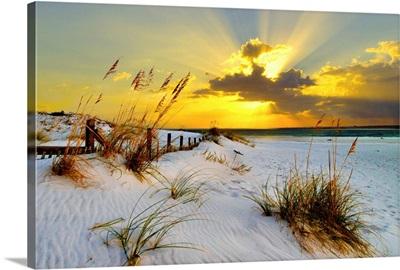 Landscape Photography Beach Golden Sunset