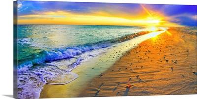 Panoramic Sunset Beach Shells