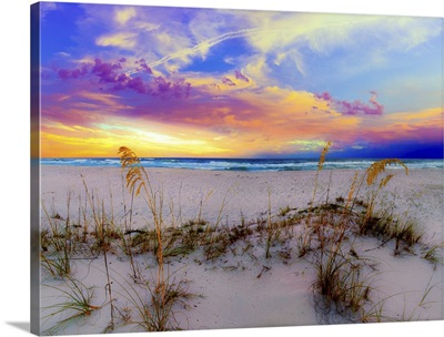 Purple Pink And Blue Sunrise Over Beach Sea Oats