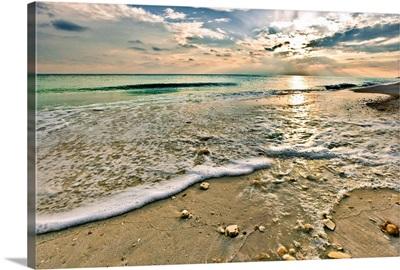 Shell Covered Beach Sunset Landscape