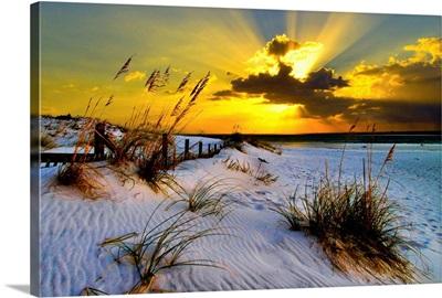 Sunset Golden Sun Rays Landscape