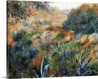 Algerian Landscape: The Ravine de la Femme Savage