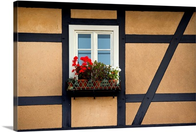 At the window of a half-timbered house hangs a flower box with geraniums, Germany