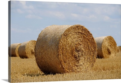 Bales Of Straw in Rural Field