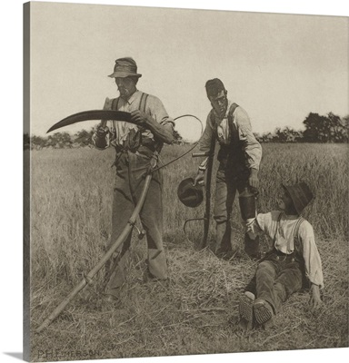 Farmworkers during the Barley Harvest in Suffolk, c. 1883-87, English photo