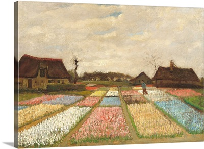 Flower Beds in Holland, by Vincent van Gogh, 1883