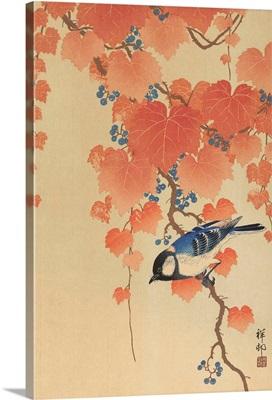 Great Tit on Paulownia Branch, by Ohara Koson, 1925-36