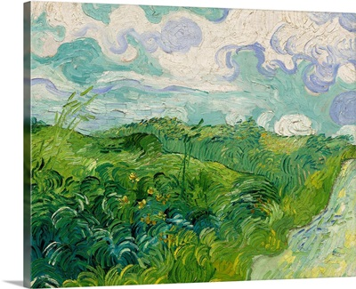 Green Wheat Fields, Auvers, by Vincent van Gogh, 1890