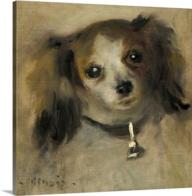 Head of a Dog, by Auguste Renoir, 1870