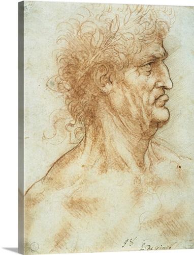 Head of a man in profile, crowned with laurel, by Leonardo da Vinci ...