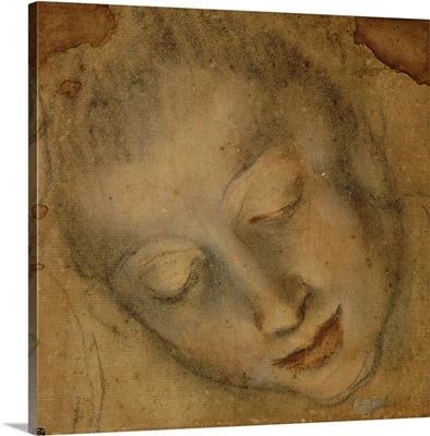 Head of a Woman, Downcast eyes, Drawing by Federico Baroccio, 16th c, Louvre Museum