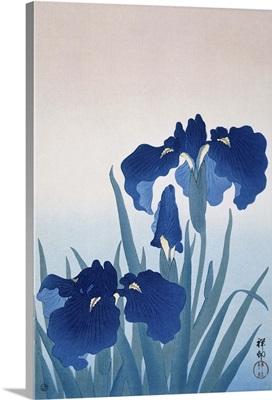 Irises, by Ohara Koson and Watanabe Shozaburo, c. 1925-36