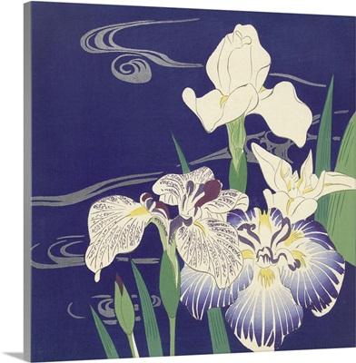 Irises, by Tsukioka Kogyo, c. 1890-1900
