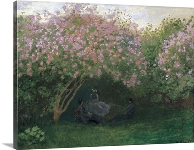 Lilacs, Grey Weather