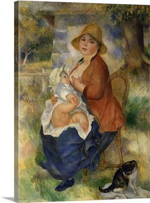 Maternity, Children Breastfed, 1886