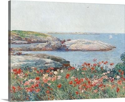 Poppies, Isles of Shoals, America, by Childe Hassam, 1891