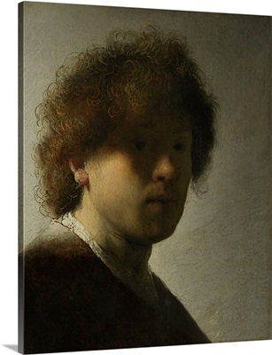 Self-Portrait, by Rembrandt Van Rijn, 1628