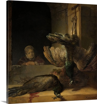 Still Life with Peacocks, by Rembrandt van Rijn, 1639