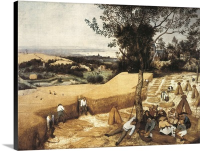 The Harvesters (1525-1569)