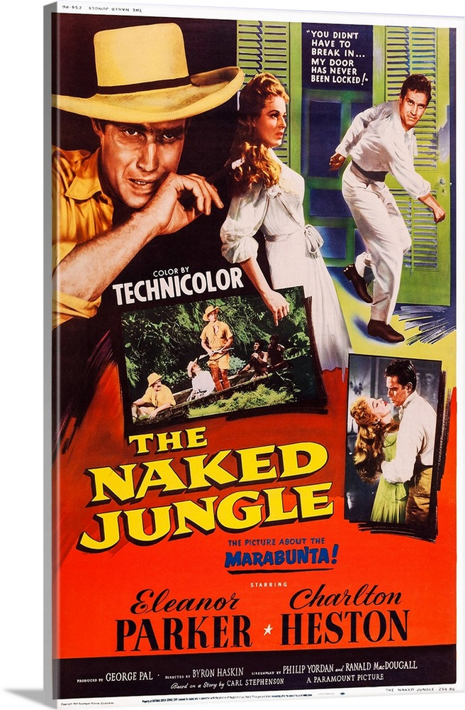 The naked jungle movie images 698