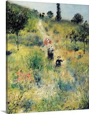 The Path through the Long Grass
