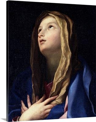 Virgin Mary, by Carlo Cignani, 17th c